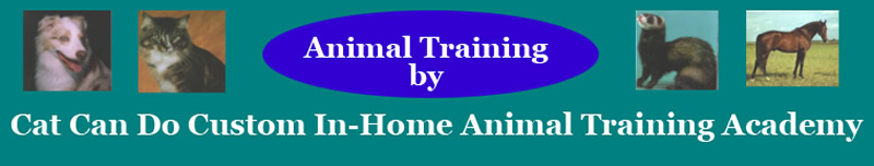 CCDT Custome In-Home Animal Training